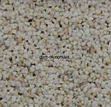 Мраморно-гранитная штукатурка Термо Браво NEW , М 1 Ведро 25 кг, фото 3
