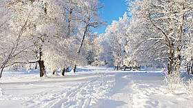 """Картина на стекле """"Зима"""""""