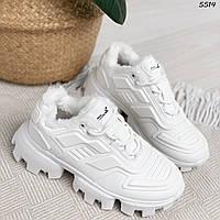 Жіночі Білі Зимові Кросівки на хутрі, фото 1