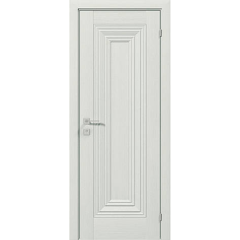 Двери RODOS Diamond FRANCHESKA, фото 2