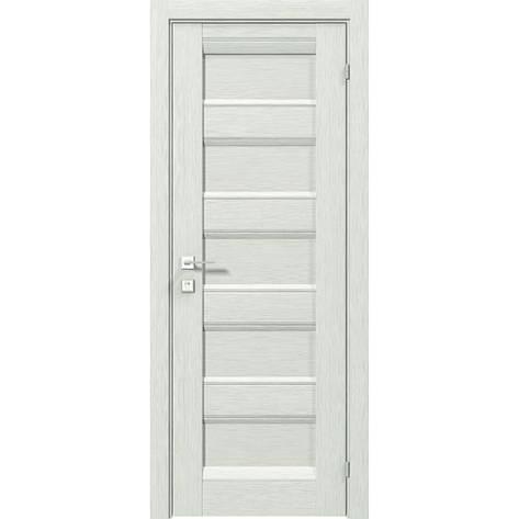 Двери RODOS Fresca RAFA, фото 2