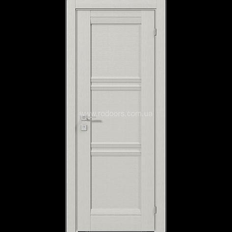Двери RODOS Fresca VAZARI, фото 2