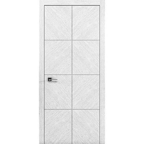 Двери RODOS Liberta DOMINO 1, фото 2