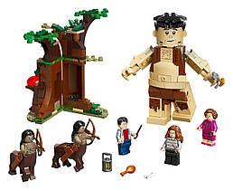 Конструктор LEGO Запретный лес: встреча Амбриджа 253 деталей (75967)