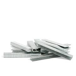 Набор скоб для степлера 18мм 10000шт INTERTOOL PT-8218