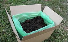 Грибная коробка Белого шампиньона Готовый набор для выращивания грибов Семейный 30 х 30 см 5 кг h, КОД: