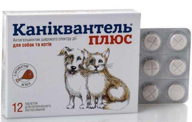 КАНИКВАНТЕЛЬ ПЛЮС таблетки от глистов для кошек и собак, 1 таблетка