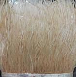 Пір'яна тасьма страусина. Колір Бежевий. Перо 10-15см. Ціна за 0,5 м., фото 4
