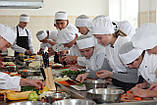 Обучение повара, фото 5