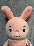 Плед - мягкая игрушка 3 в 1  Заяц (83), фото 4