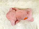Плед - мягкая игрушка 3 в 1  Заяц розовый (90), фото 4