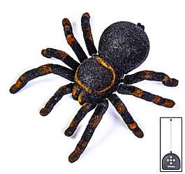 Робот на радиоуправлении Cute Sunlight Тарантул 781 паук 1116334727, КОД: 1320661