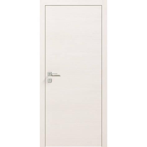 Двери RODOS Modern FLAT, фото 2