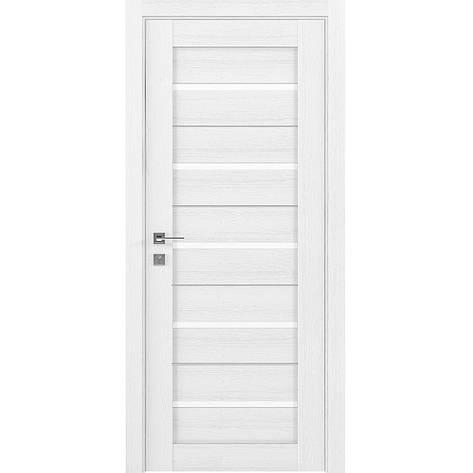 Двери RODOS Modern LAZIO, фото 2