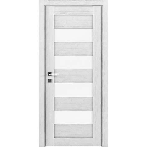 Двери RODOS Modern MILANO, фото 2