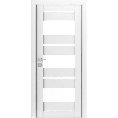 Двери RODOS Modern POLO, фото 2