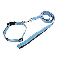 Ошейник для собак TUFF HOUND TC00305 Blue Gray 2.038-51 с поводком 5311-16545, КОД: 2402554