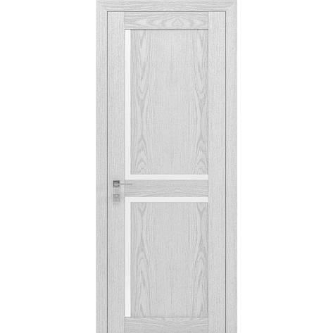 Двери RODOS Modern SCANDI, фото 2