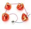 Развивающий набор  ток от овощей с часами и лампочкой.