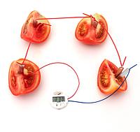 Развивающий набор  ток от овощей с часами и лампочкой., фото 1