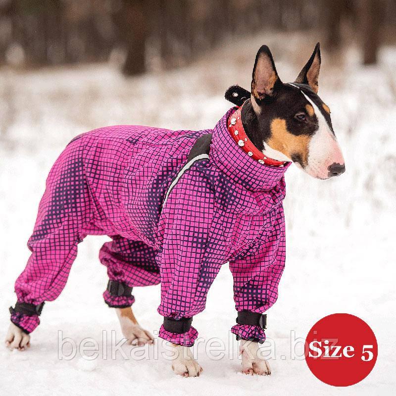 Комбинезон для собак DIEGO Snow F для девочек, размер 5