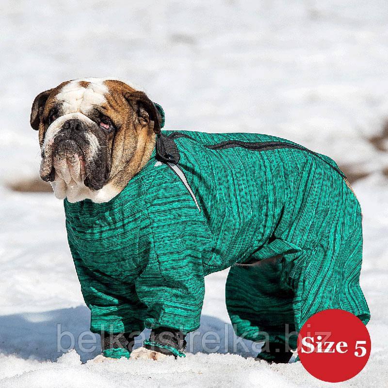 Комбинезон для собак DIEGO Snow M для мальчиков, размер 5