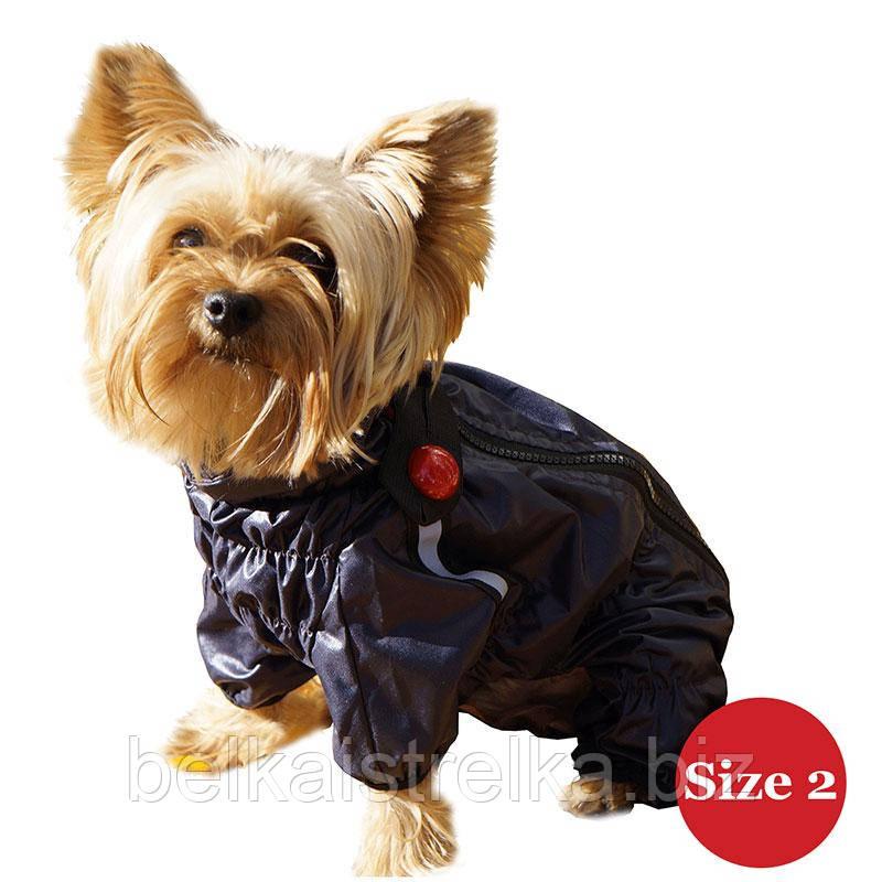 Комбинезон для собак DIEGO Rain M синий баклажан для мальчиков, Размер 2
