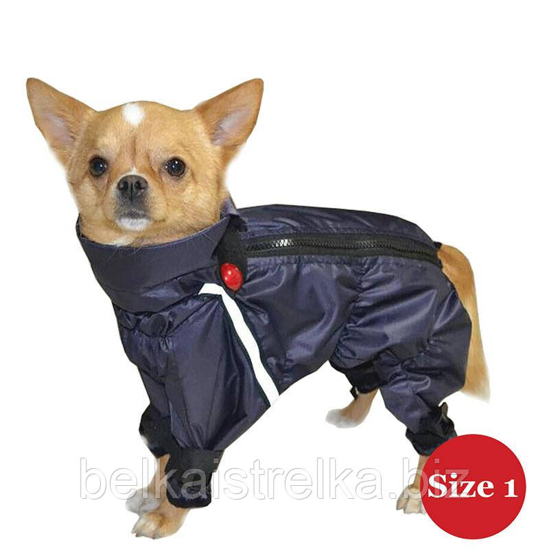 Комбинезон для собак DIEGO Rain M синий баклажан для мальчиков, Размер 1