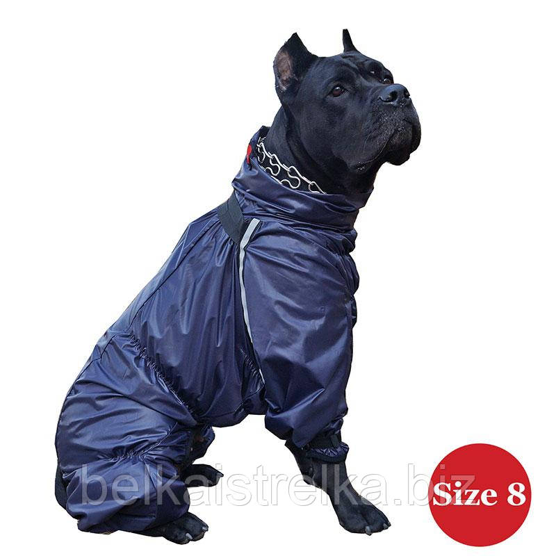 Комбинезон для собак DIEGO Rain F фиолетовый для девочек, Размер 8