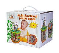 Деревянная развивающая игрушка-сортер 9 в 1 с лабиринтом (5116), фото 1