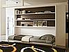 Горизонтальная откидная кровать с полками в гостиную