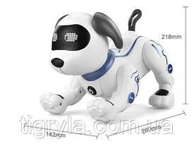Собака робот - интерактивный друг с множеством функций аналог пес Арго, робопес, фото 3