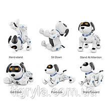 Собака робот - интерактивный друг с множеством функций аналог пес Арго, робопес, фото 2