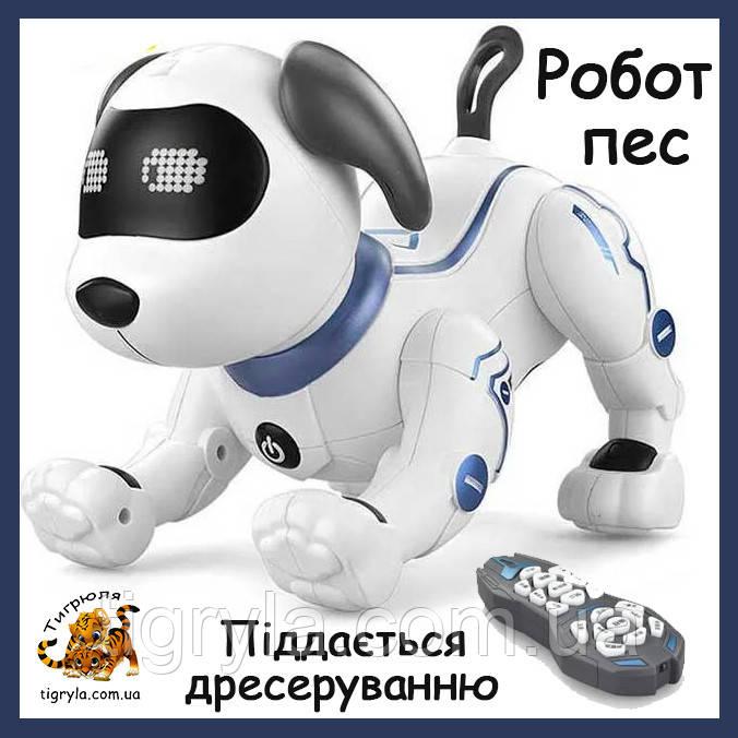 Собака робот - интерактивный друг с множеством функций аналог пес Арго, робопес