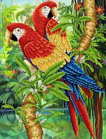 """Схема для вишивання бісером на атласі """"Папуги"""" Розмір 27х35 див."""