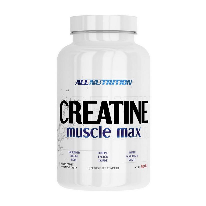 Креатин моногидрат All Nutrition Creatine Muscle Max (250 г) алл нутришн unflavored