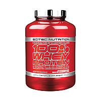 Сывороточный протеин концентрат Scitec Nutrition 100% Whey Protein Professional (2,3 кг) скайтек вей green elf