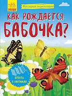 Энциклопедия Как рождается бабочка Ранок 279028, КОД: 902244