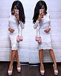 Платье гипюровое облегающее длиной до колен с длинным рукавом (р. S, M, L) 8031732, фото 8