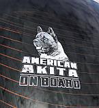 Наклейка на авто / машину Американская акита на борту (American Akita on board), фото 3