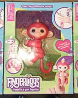 Fingerlings Monkey - ручна мавпочка, фото 1