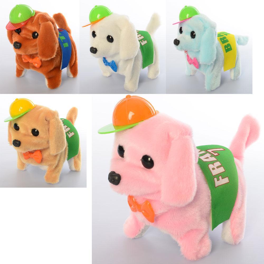 Собака MP 2087 (72шт) 15см, в кепке, ходит, звук, микс цветов, на бат-ке