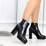 Роскошные черные женские ботинки ботильоны на устойчивом каблуке, фото 4