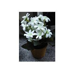 Декор T15-11 квіти, 17 см