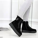 Стильные повседневные женские черные зимние ботинки из натуральной замши, фото 3