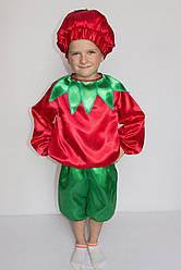 Карнавальний костюм Помідор №2
