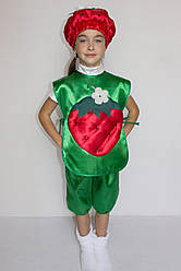 Карнавальний костюм Полуниця №1