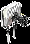 Антенна QUMAX для Teltonika RUTX11 (AX11M), фото 4