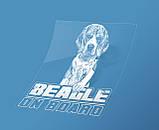 Наклейка на машину/авто Бигль на борту (Beagle on Board), фото 2