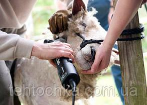 Машинка для стрижки овец Craft-tec CX-SC 21, фото 2